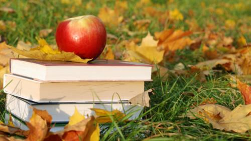 Best Book Club Picks For Fall