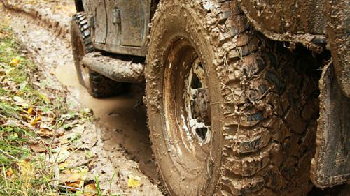 Georgia's Top Off-Roading Trails (Maps Included)